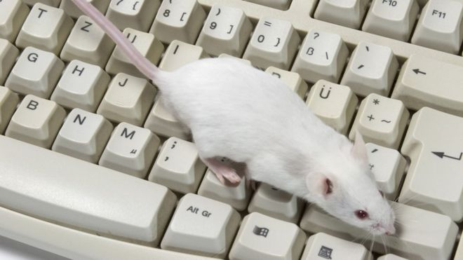 In fighting deep fakes, mice may be great listeners